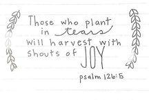 Sow tears reap joy