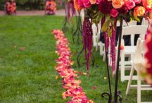 Wedding Ideas - Rose Petals / This is where we'll share and re-pin fun ideas for how to incorporate beautiful rose petals on your big day.