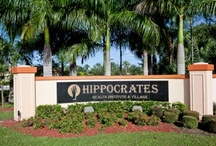 Hippocrates Health Institute West Palm Beach FL / All health related information found here.  / by P Colonna