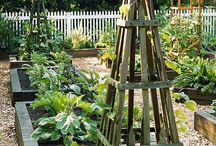 Plantestativer