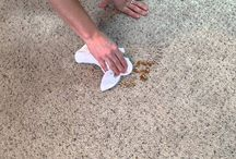 The Magic of CitruSolution Carpet Cleaning! / This board will focus on the magic of the CitruSolution Carpet Cleaning process.
