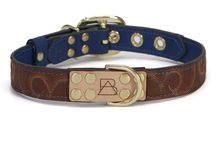 The Royal Blue Collection + Inspiration / Get a taste of the good life with our Royal Blue Collars. Deep blue contrast with bright multicolor stitching and rich brown leather. Featuring the leather from recycled cowboy boots, solid brass hardware, laser etched details, hand painted edges, and custom stitching. Each dog collar comes with a genuine, brass plated Boots & Arrow tag.