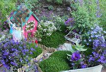 Jardineria ideas