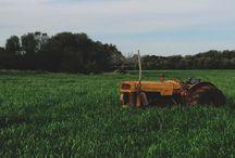 Farming/Forestry