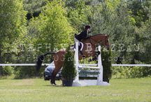 Concours Pepinieres May 22, 2015