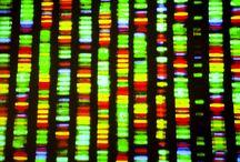 Mitochondrial Disease News