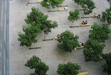 Trees and flooring