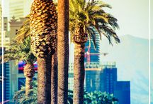 24 Hours in Las Vegas