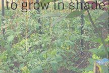 Gardening Gurus Group