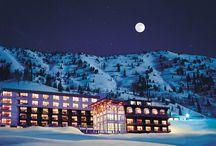 Winter Wonderland / Beautiful Ski and Winter destination spots you must visit.