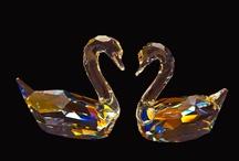 Graceful Swans / by Victoria Buttigieg