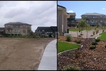 Before and After / Before and after landscapes we have done