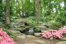 Ponds and Water Features / Water features can enhance any landscape in both site and sound. Pinehurst is a water feature contractor with decades of experience designing and installing waterfalls, streams, and pond construction in a broad range of locations and styles.