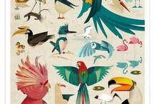ZEICHNEN // Tiere & Pflanzen :: DRAWING // Animals & Plants / Wie zeichnet man ... • How to draw ...