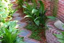 Side garden / Between bus and house