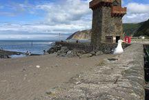 Vakantie Engeland Devon / Devon