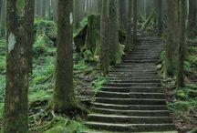 Stairs - schody