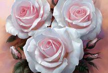 rose disegnate 1