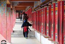 """Cina - Monlam Festival / Monlam o """"Festa della Grande Preghiera"""", si celebra in tutto il mondo tibetano e inizia il quarto giorno del primo mese del calendario lunare tibetano, subito dopo i festeggiamenti del Losar, il capodanno."""