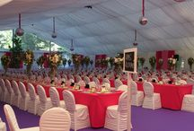 Wedding in Pink / Tolle Hochzeit in Kärnten mit Zelt, Mietmöbel und Dekoration von Help Organisation Veranstaltungsmanagement und-Equipment.