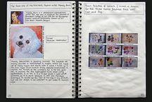Visual Art Diarys