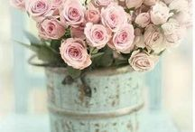 shabby chic/romantic