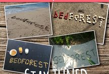 Bedforest Contest - Indonesia / $1000 to win on Bedforest ! http://bit.ly/bEdFoResT