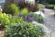 Bahçe taşları / Bahçe