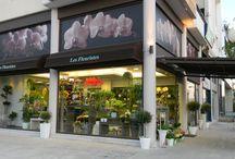 Ανθοπωλείο Les Fleuristes / Ανθοπωλείο Les Fleuristes, Λαοδίκης 39, Γλυφάδα, Αθήνα.  Τηλ. 2108947766