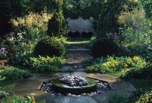 My dream gardens