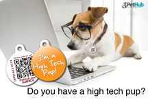 Cool Pet ID Tags & Accessories / Pet ID can be stylish and fun. Check out our designs at PetHub.com.
