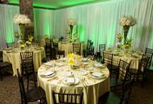 Oasis Photo Shoot / Rentals by Premiere Events, Floral by The Floral Studio, Lighting by ILD lighting (Intelligent Lighting Design), Attire by Debbie Bridal, Sugar Factory Gay Isber  Awesome lime green and white escort card table.  Rentals by Premiere Party Central, Tents and Events, Floral by The Floral Studio, Lighting by ILD lighting (Intelligent Lighting Design), Attire by Debbie Bridal, Sugar Factory Gay Isber  www.premiereeventsonline.com