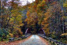 Cherokee Fall Foliage