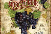 этикетки картинки вино виноград