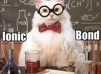 Chemistry Cat / by Bridgette Patterson