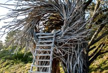 awesome outdoor / by Frances Kierman