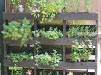 drivhusindretning