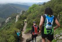 Trails en Terre Cathare de Quéribus à Peyrepertuse / Le Trail de Quéribus et la Course des Seigneurs. 285 coureur sont partis à  l'assaut des citadelles du vertige.