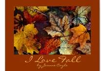 I Love Fall! / by Joanne Coyle