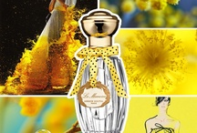 Imaginescent / Images de Parfums