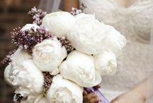 Wedding / by Vlad Barshai