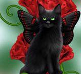 Fantasy Katzen-Bilder