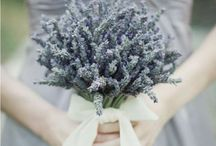 ✷ Wedding Bouquets / Lots of interesting wedding bouquet ideas suitably for any style of a wedding.