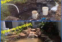 Pond Restorations / Pond Restorations by Nature Coast Aquascape in  Tampa Bay Area and Floral City, Florida (FL)  (727) 258-4114 Tampa Bay ~ (352) 637-9004 Floral City