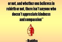 Buddhism / by Annette Heathen