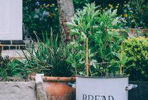 Secret Gardening / A country Gardem