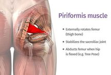 Piriformis Syndrome/Sciatica: What's the Difference? / El Paso, TX. Chiropractor Dr. Alex Jimenez explains the differences between Sciatica & Piriformis syndrome.