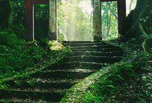 Scene Garden