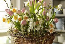 Jarní Květiny Truhlík