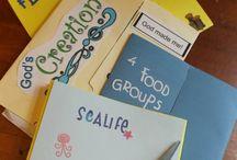 Homeschool - Lapbooks